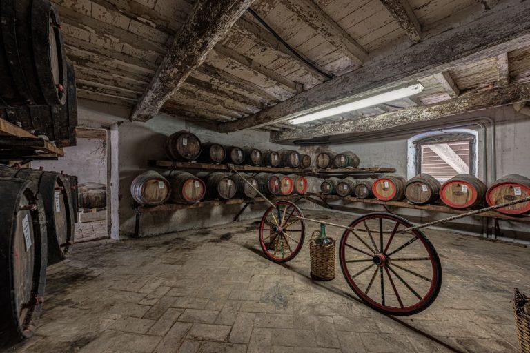 degustazione-vini-azienda-concadoro-castellina-in-chianti-1_38.jpg