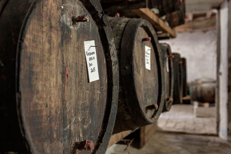 degustazione-vini-azienda-concadoro-castellina-in-chianti-2_37.jpg