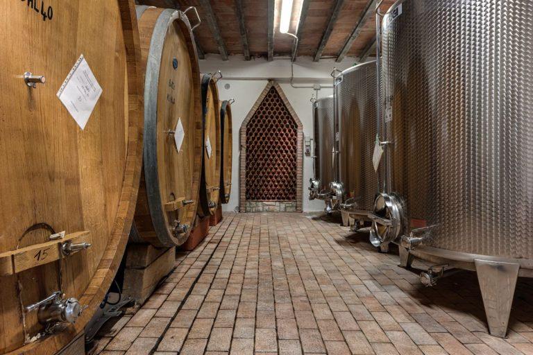 degustazione-vini-azienda-concadoro-castellina-in-chianti-30_9.jpg