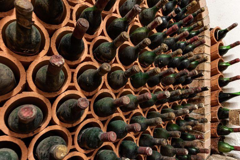 degustazione-vini-azienda-concadoro-castellina-in-chianti-35_4.jpg