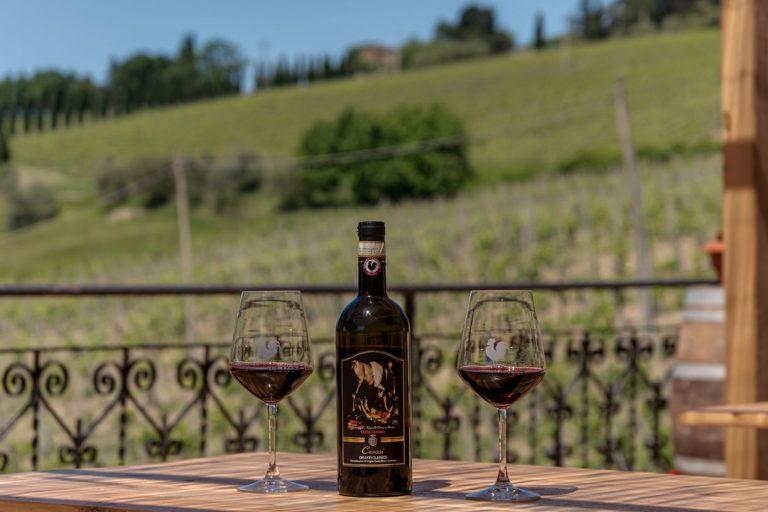 degustazione-vini-azienda-concadoro-castellina-in-chianti-8_31.jpg